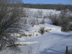 Broughton's Creek Watershed, February 2013 - No wetlands in sight yet