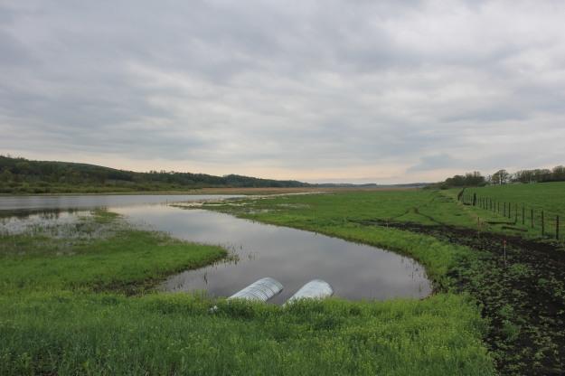 Pelly's Lake Dam